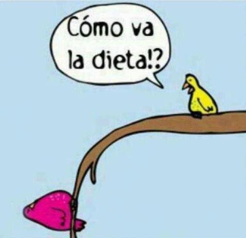 dieta dibu